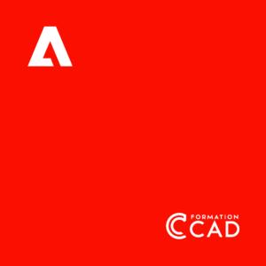 Formations Adobe