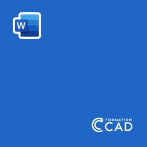 Formation Microsoft Word Avancé